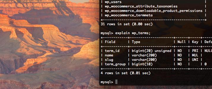 MySQL 5.5.